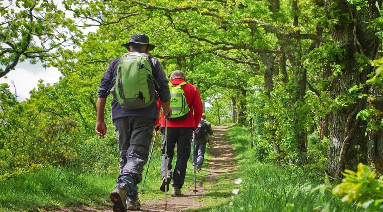 Consignes sanitaires pour la pratique de la randonnée